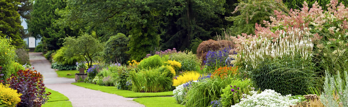 Gardening Services – Have a Garden You Can Enjoy All Year Round
